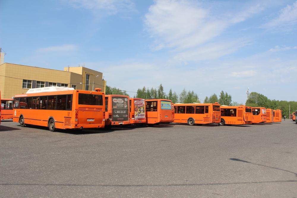Отмененные маршруты могут вернуться на улицы Нижнего Новгорода